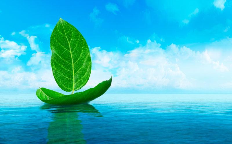 IMO 2020, ¿Cómo afectará la nueva Normativa Medioambiental a mi negocio?